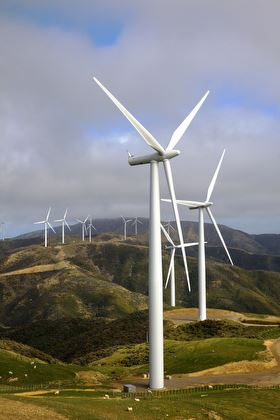 Turbines ranging across the wellington hills at West Wind